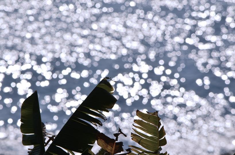 波のキラメキ玉ボケ