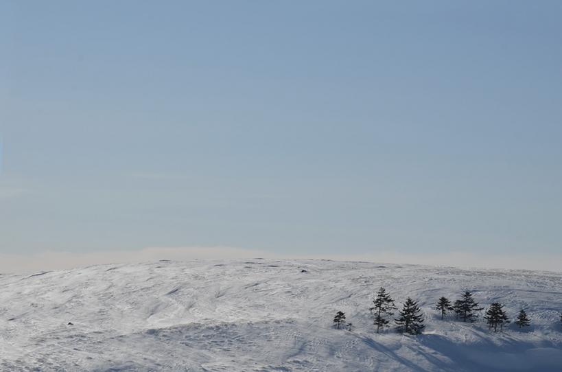 美ヶ原高原 冬の丘 1