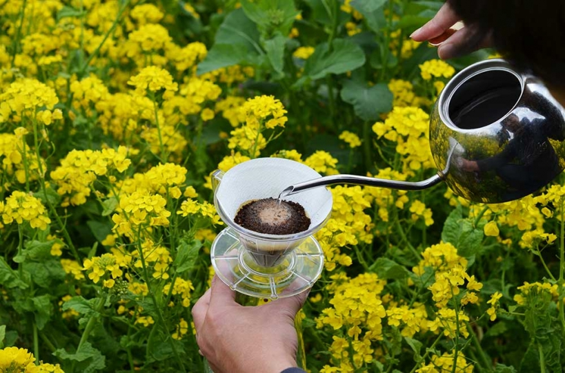 アウトドアコーヒー  菜の花畑 ハンドドリップ