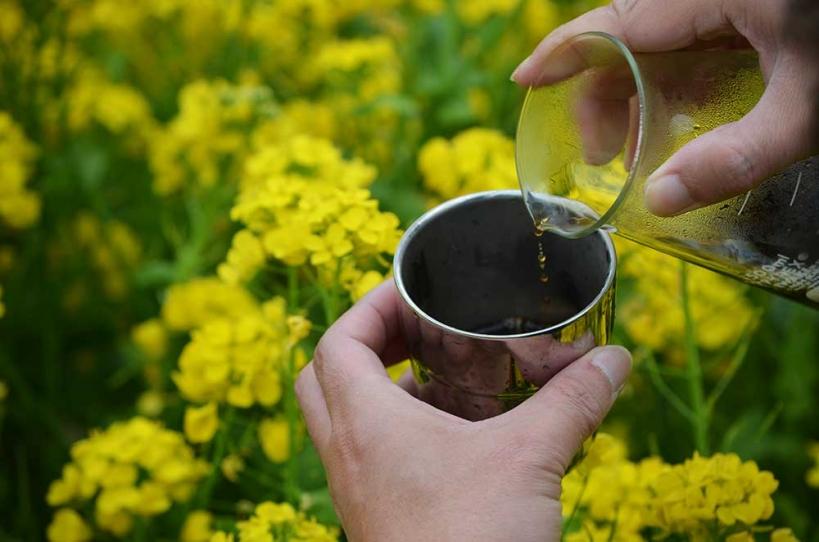 アウトドアコーヒー 菜の花畑 ハンドドリップ2