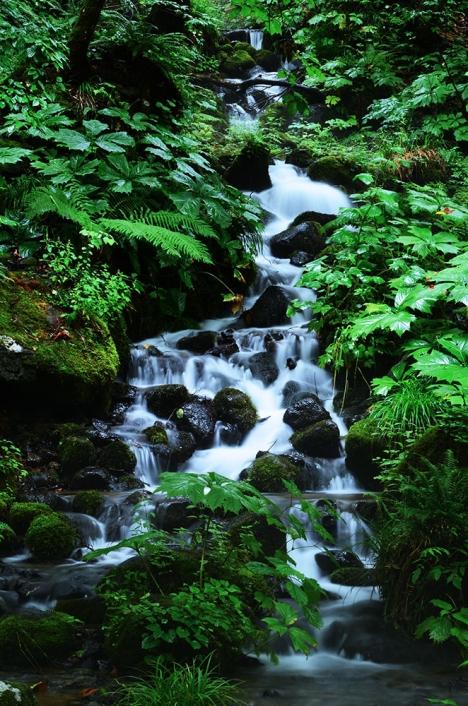 奥入瀬渓流 千筋の滝