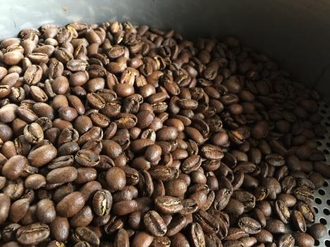 パナマ エスメラルダ ゲイシャ コーヒー豆