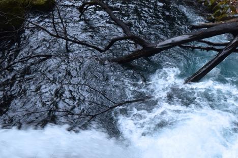アウトドアコーヒー 浄蓮の滝付近の秘密の場所-TRIPDRIP-09