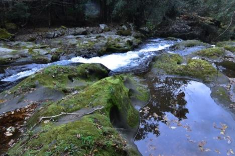 アウトドアコーヒー 浄蓮の滝付近の秘密の場所-TRIPDRIP-07