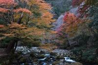 アウトドアコーヒー 浄蓮の滝付近の秘密の場所-TRIPDRIP-01